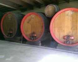 Les foudres du domaine de Grille-Midi, viticulteur à Fleurie, Mâcon, Lyon